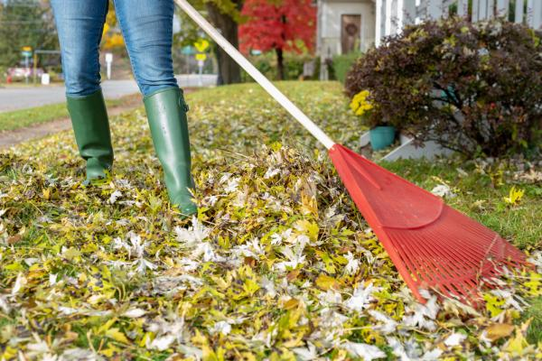 6 Fall Disaster Prevention Tips for Your Home